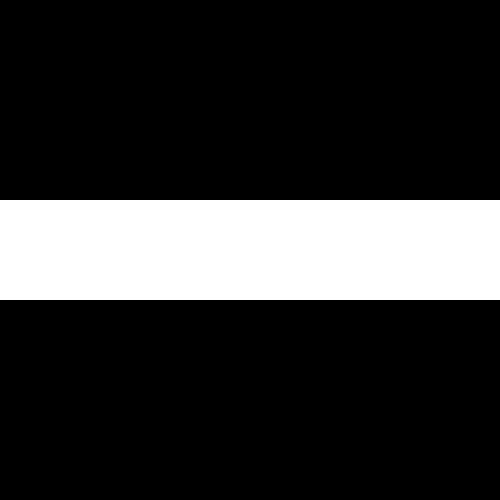 INDISCIPLINARIAN